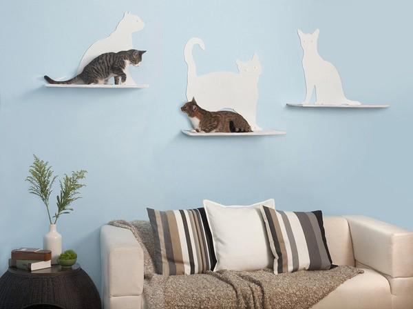 CatShelves5