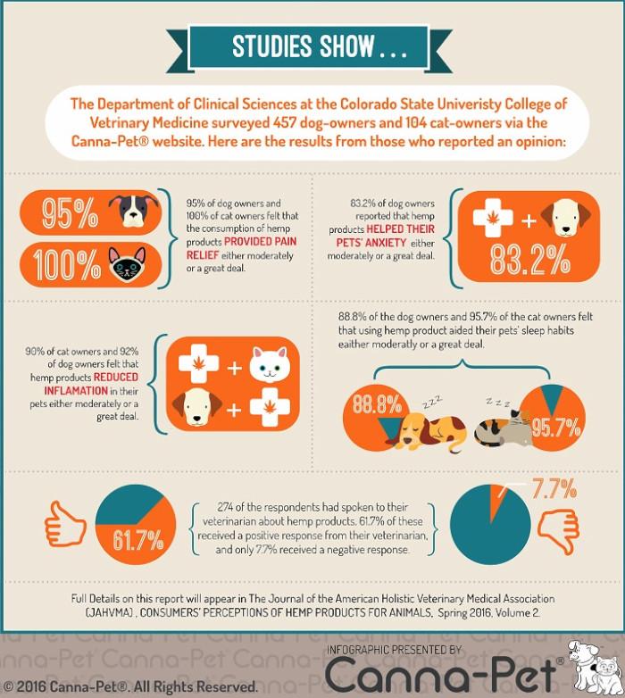 infographic-studies-show