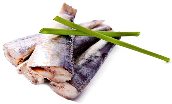 finicky-brain-food-02-414853438-fish
