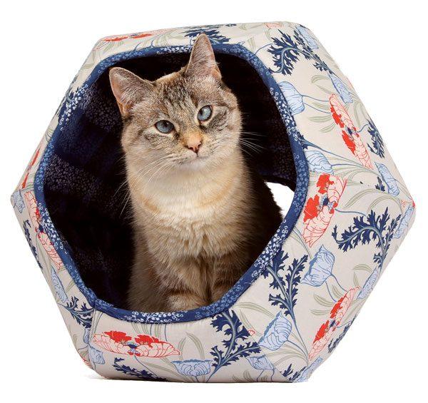 feline-design-naptime-Hide