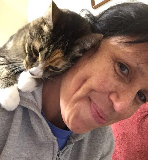 phoebe-cat-shoulder