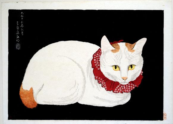 Meow-Mix-Tana