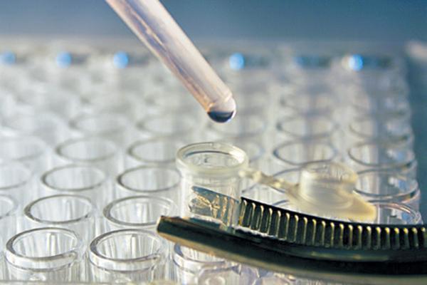 Stem cell research for feline gingivostomatitis.