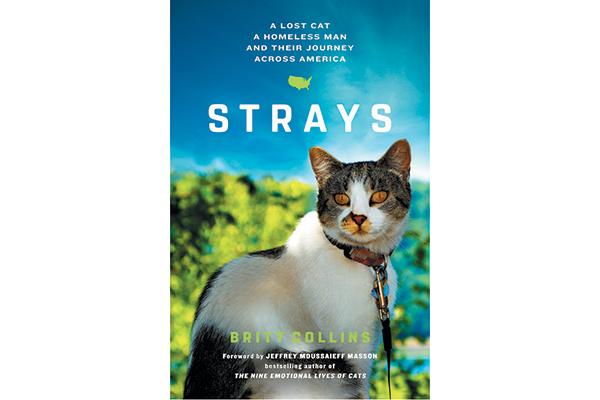 Strays book.