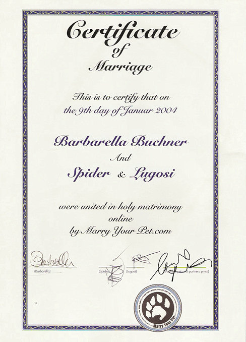 marry-your-cat-certificate-lugosi-and-spider