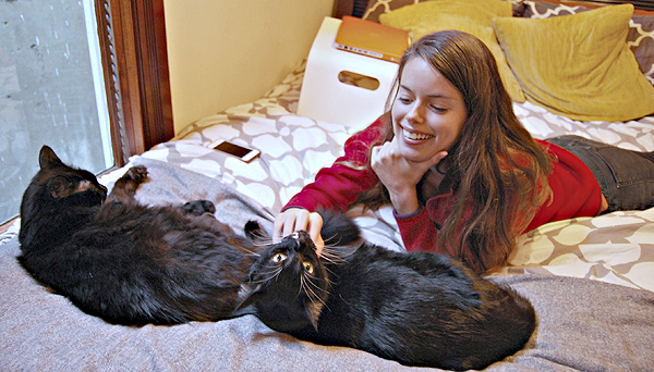 KitTee Courtney and Cats