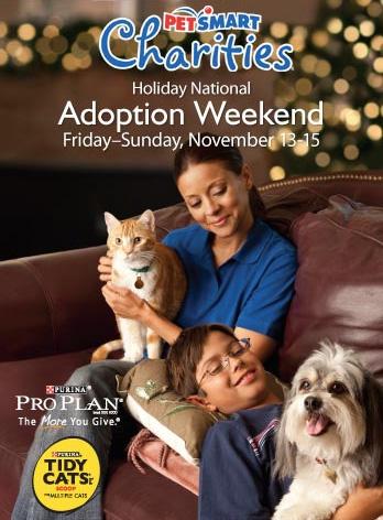 PetSmart Adoption Weekend Nov 13-15 - Catster
