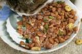 Does Pet Food Cause Health Problems?