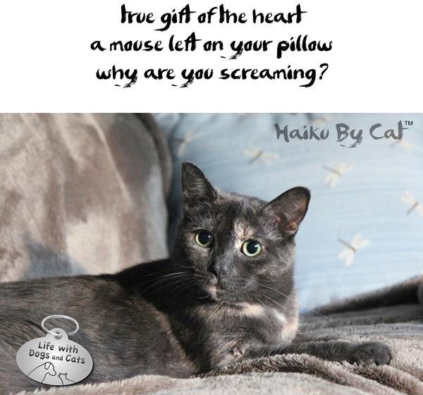 2-Haiku by Cat Athena mouse on pillow gift Internationl Haiku Day