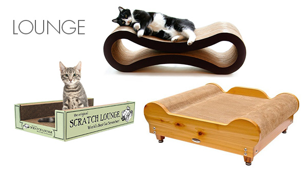 Check Out The Best Cardboard Creations For Cats Catster