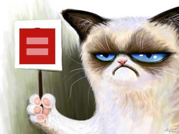 """Our 8 Favorite """"Cats for Marriage Equality"""" Facebook Icons"""