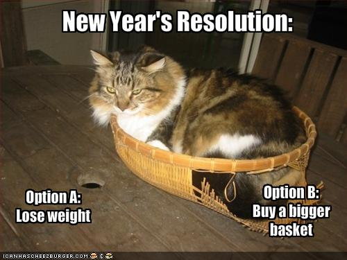Happy New Year! - Catster
