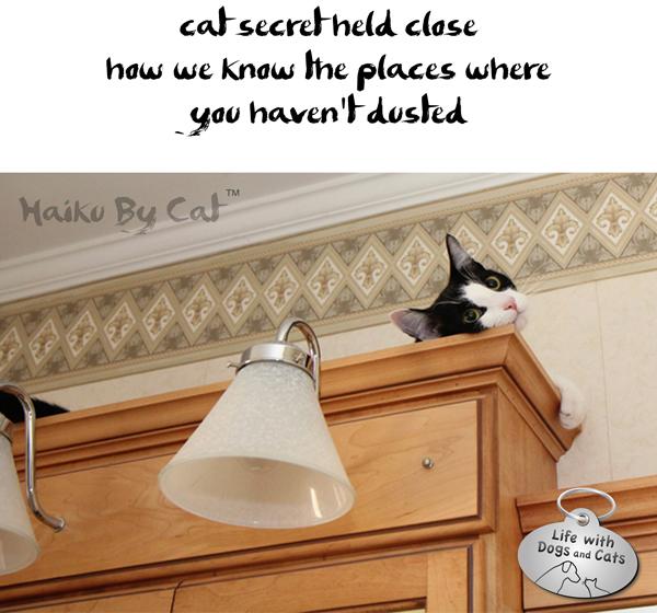 5-Haiku by Cat Calvin hanging out National Haiku Day