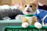 7 Awesome Cat Calendars That Benefit Cat Rescue