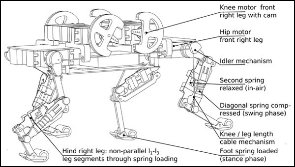 swiss robotics engineers create a better robot \u2014 based on a cat 5 Parts of a Robot an error occurred