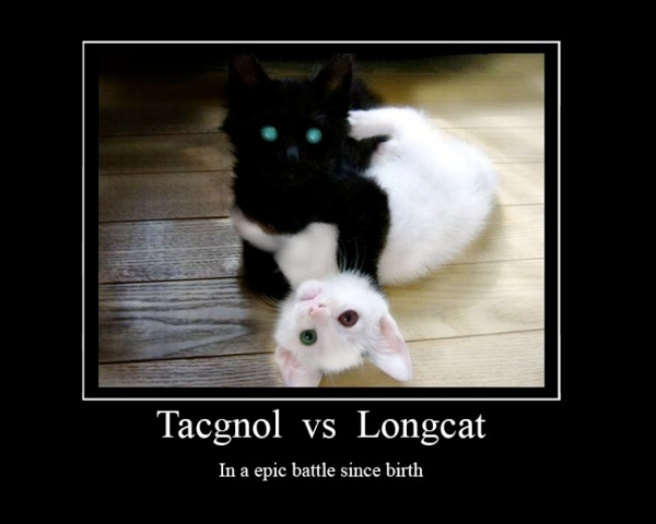 [Image: 600px-tacgnol-longcat-motivator.jpg]
