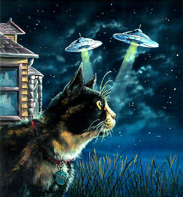 Beyond The Omens: Cats From Beyond! Tales Of Feline Aliens, Ghosts, And