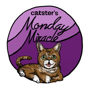 Catster-Monday-Miracle-badge_37