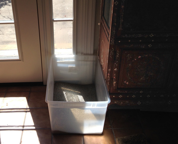 A large litter box by a window.
