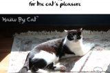 Haiku by Cat: My Sun, My Sun!