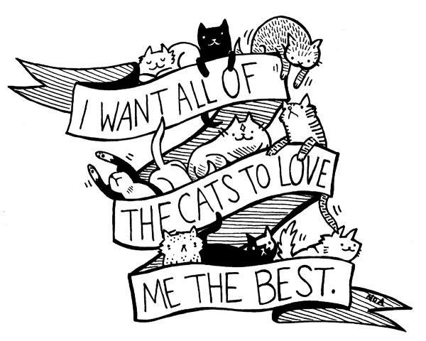 Wear A Nation Of Amanda T Shirt And All The Cats Will Love You The