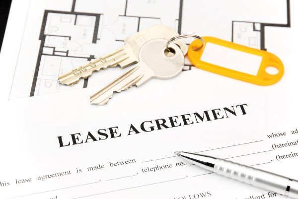 Make sure any pet-friendly language is written into the lease agreement.