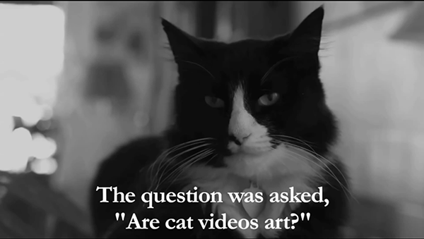 The Internet Cat Video Festival Is Back — and Henri Is Out in Front