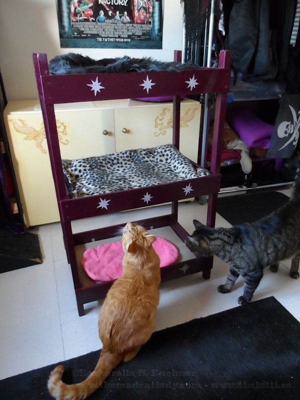 Catster Diy Make Your Own Triple Kitty Bunk Bed Catster