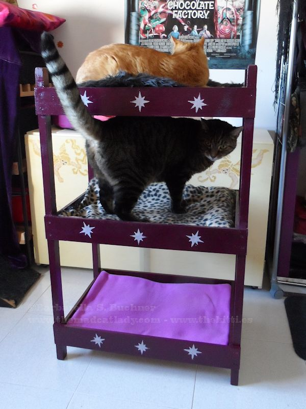 catster diy make your own triple kitty bunk bed catster. Black Bedroom Furniture Sets. Home Design Ideas