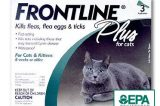 "Win iPad in the Frontline ""We've Got Your Back"" Photo Sweepstakes"