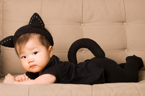 5 Diy Cat Themed Halloween Costumes For Kids Catster