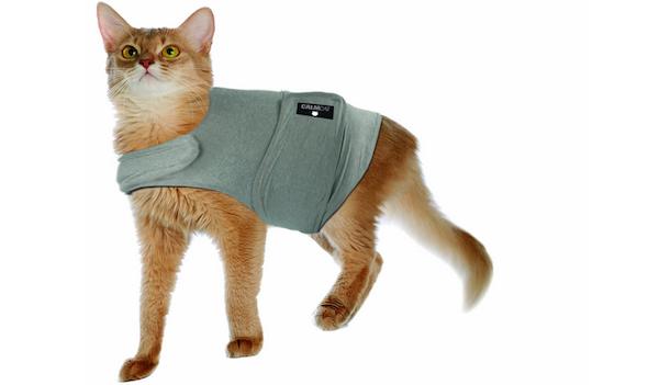 Friday Freebie: Win a Calm Cat Coat From BH Pet Gear