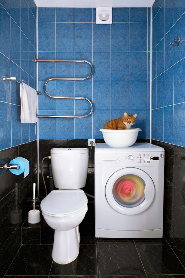 Cleaning Your House the Cat and Earth-Friendly Way