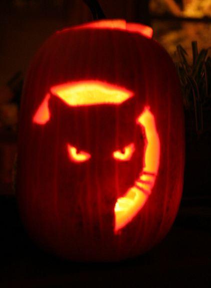 Pumpkin Dry Cat Food