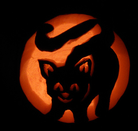 21 Incredible Cat Pumpkin Carvings Catster