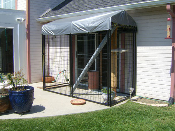 How to make a catio.