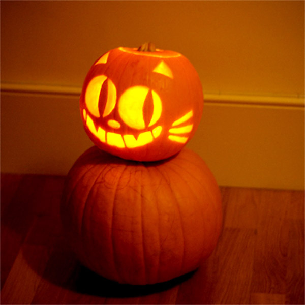 6 Cat Themed Jack O Lantern Ideas For You And Your Kids Catster