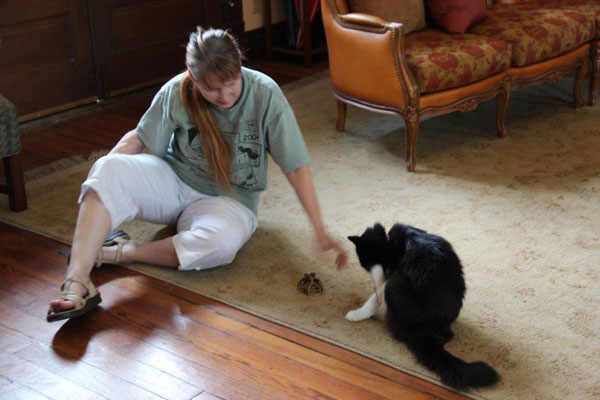 I Left My Cats at Home for a Getaway — and I Was Charmed by Other Cats on the Road