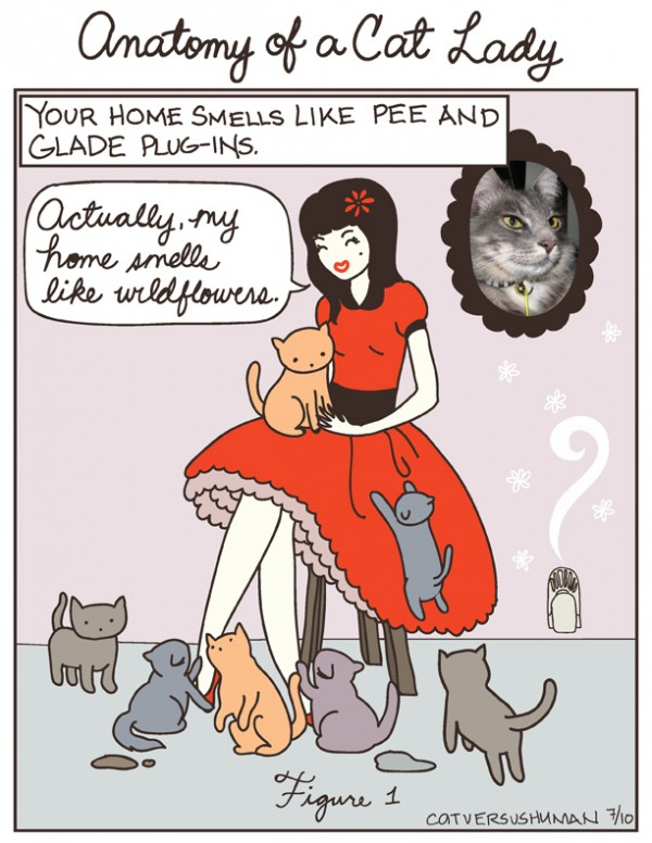 Cat Lady Toons Hit A Little Close To Home Catster