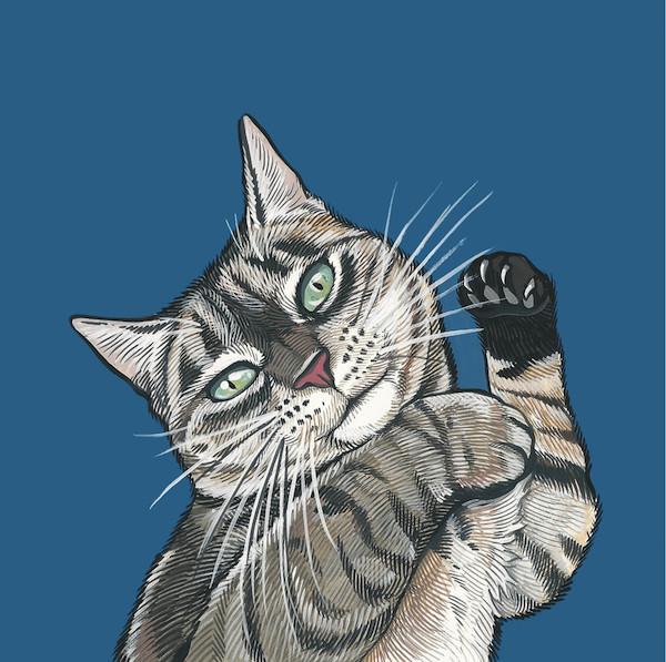 Win a Stunning Custom Cat Portrait by Manda Wolfe