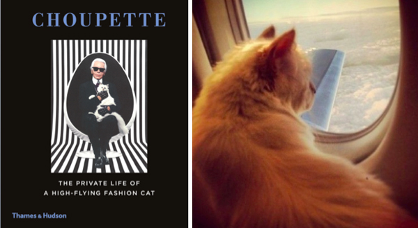 After a Book and a Line of Makeup, What's Next for Karl Lagerfeld's Cat Choupette?