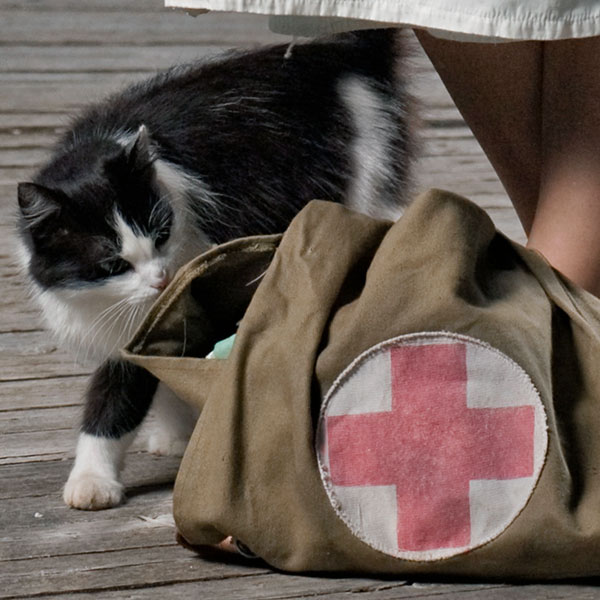 Retro nurse with cat and first aid kit by Shutterstock