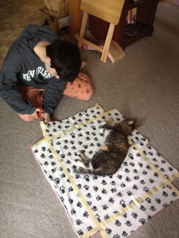 1 No Sew Cat Bed