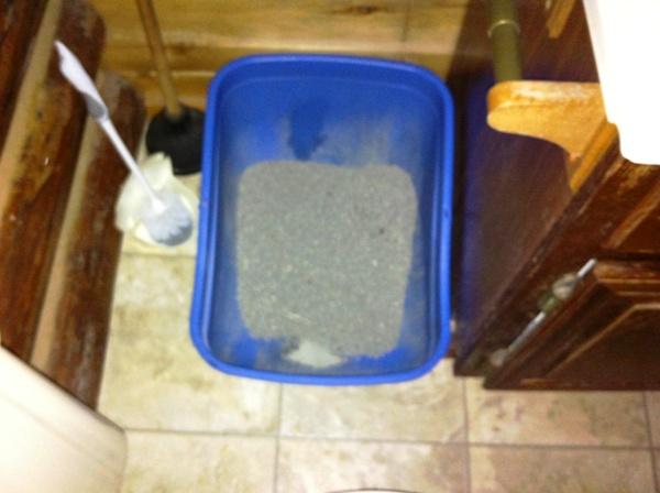 Catster Tips: Where to Hide Your Cat\'s Litter Box in a Small ...