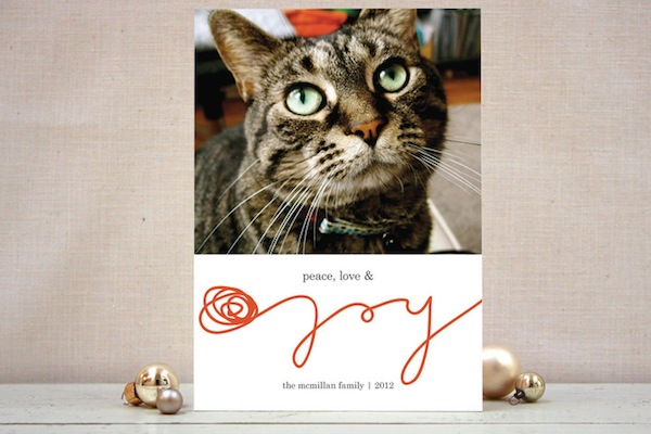 minted offers some of the most clever pet centric holiday photo cards available including this one featuring a yarn font dont let the abundance of dog - Pet Holiday Cards