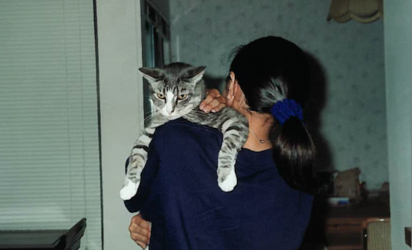 Growing Up with Cats Taught Me About Being Human - Catster