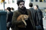 "We Talk to Dawn Barkan, Animal Trainer for the Movie ""Inside Llewyn Davis"""