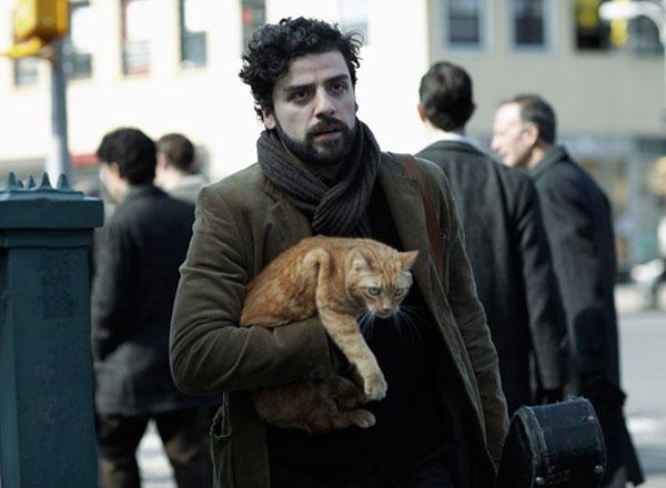 """We Talk to Dawn Barkan, Animal Trainer for the Movie """"Inside Llewyn Davis"""""""