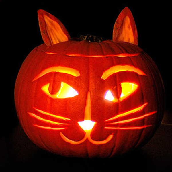 0d7460c37 6 Cat-Themed Jack-o-Lantern Ideas for You and Your Kids - Catster