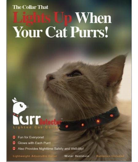 As If The Presence Of A Tiny Vibrating Wizard In Your Lap Weren T Enough Now Cat S Purr Can Stimulate One More Senses With This Fancy Collar